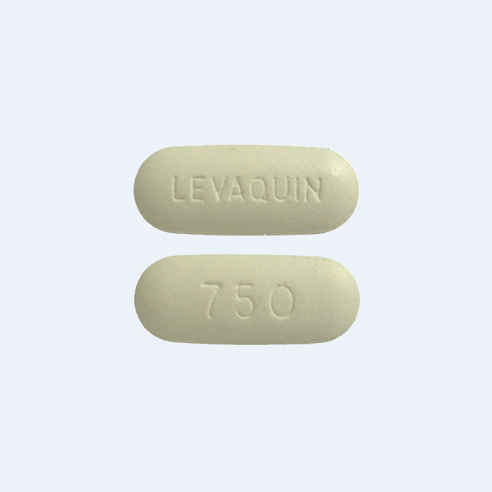 Theophylline with levaquin